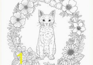 Big Cat Coloring Pages 425 Best top Coloring Page for Adults Images In 2020