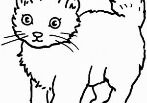 Big Cat Coloring Pages Coloring Cat