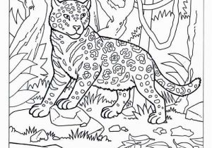 Big Cat Coloring Pages Dragana Jerinic Ex Milojkovic Djerinicexmiloj On Pinterest