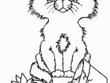 Big Cat Coloring Pages Pin by Sea Puddles On Coloring Pages