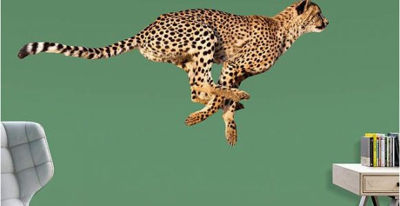 Big Cat Wall Murals Cheetah Life Size Animal Removable Wall Decal In 2019