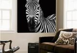 Big Head Wall Murals Zebra Ii Prints by Debra Van Swearingen at Allposters