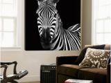 Big Head Wall Murals Zebra Ii Prints by Debra Van Swearingen at Allposters