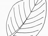 Big Leaf Coloring Pages Free Printable Leaf Coloring Pages for Kids Clipart Best Clipart