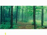 Biggies Wall Mural Biggies Wall Mural 40 X 80 Misty forest Fice Depot