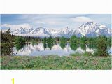 Biggies Wall Mural Biggies Wall Mural 60 X 120 Mountain Flower Fice Depot