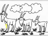 Billy Goats Gruff Coloring Page Three Billy Goats Gruff Coloring Pages
