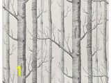 Birch Tree forest Wall Mural Haokhome Modern Birch Tree Wallpaper Non Woven forest Trunk
