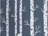 Birch Tree Wall Mural Diy 10 Best Birch Tree Wallpaper Images
