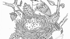 Bird Nest Coloring Page Adult Coloring Page Bird with Bird S Nest original Art