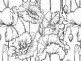 Black and White Flower Wall Mural Black and White Flower Wallpaper