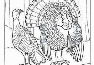 Black and White Turkey Coloring Pages 26 Lovely Free Turkey Coloring Pages Inspiration