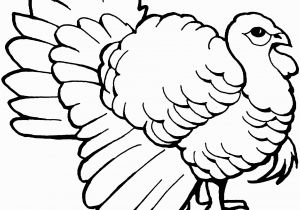 Black and White Turkey Coloring Pages Free Turkey Coloring Pages