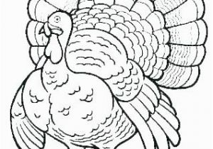 Black and White Turkey Coloring Pages Turkey Coloring Page Black and White Turkey Coloring Pages Black and