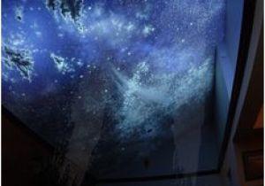 Blacklight Murals 14 Best My Art Black Light Invisible Black Light Images