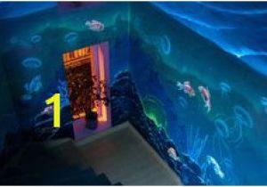 Blacklight Murals 48 Best Glow In the Dark Murals Images