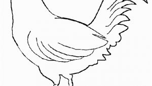 Blue Hen Chicken Coloring Page Free Rooster to Print