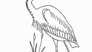 Blue Heron Coloring Page Coloring Page Great Blue Heron Coloring Pages