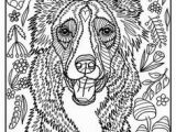 Border Collie Coloring Page 2695 Best Linearth Images