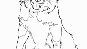 Border Collie Coloring Pages to Print Border Collie Coloring Page