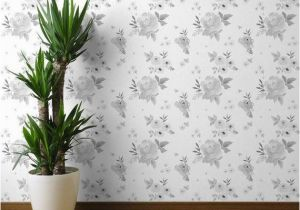 Botanical Tale Floral Wall Mural Floral Wallpaper Sweet Blush Roses Black and White by