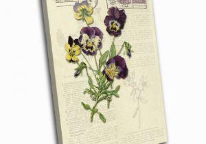 Botanical Wall Murals Uk Amazon Bold Bloc Design Purple Vintage Shabby Chic