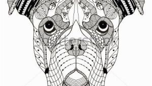 Boxer Dog Coloring Pages Boxer Dog Head Zentangle Stylized Vector Illustration