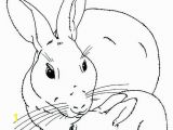 Brer Rabbit Coloring Pages Lustermahtab
