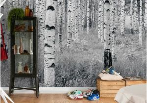 Brewster Home Fashions Wall Murals Birch forest Wall Mural by Brewster at Gilt Walls