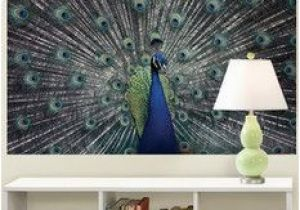 Brewster Home Fashions Wall Murals Brewster Home Fashions Peacock Poster Decal Murals