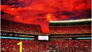 Bryant Denny Stadium Wall Mural 39 Best Sweet Home Alabama Images