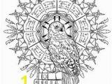 Buckbeak Coloring Pages 138 Best Harry Potter Art Images On Pinterest