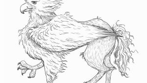 Buckbeak Coloring Pages Buckbeak by Svieta Sv On Deviantart