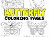 Bug Jar Coloring Page 979 Best Bugs & Insect Activities for Kids Images On Pinterest
