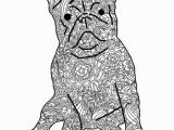Bulldog Coloring Pages Bulldog Coloring Pages New Bulldog Coloring Pages Beautiful 75 Best
