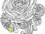 Buttercup Flower Coloring Pages 2623 Besten Flower Coloring Bilder Auf Pinterest