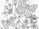 Butterflies Coloring Pages butterflies Coloring Pages Fetching Fresh Coloring Pages Line New