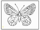 Butterfly Color Pages butterfly Coloring Pages