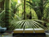 Buy Wall Mural Online forªt Tropicale 12 X 8 3 66m X 2 44m