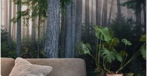 Cabin In the Woods Wall Mural 233 Best forest Wall Murals Images In 2019