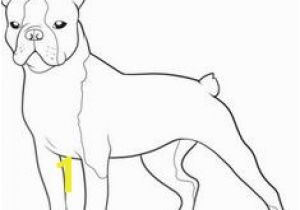 Cairn Terrier Coloring Pages Boston Terrier Coloring Page Bostons 3 Pinterest