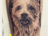 Cairn Terrier Coloring Pages Cairn Terrier Tattoos Ideas