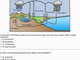 Carbon Cycle Coloring Page Carbon Cycle Coloring Page Best the Process the Water Cycle