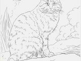 Cat Coloring Pages for Kids to Print Pushing the Cat Printable Coloring Pages at Coloring Pages