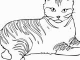 Cat Warriors Coloring Pages American Ninja Warrior Coloring Pages American Prize Winning