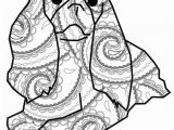 Cavalier King Charles Spaniel Coloring Page Coloring Book