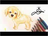 Cavalier King Charles Spaniel Coloring Page Hund Zeichnen Cavalier King Charles Spaniel Welpe Malen Dog