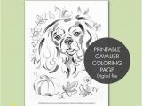 Cavalier King Charles Spaniel Coloring Page Printable Coloring Page