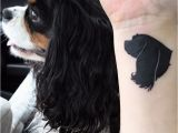 Cavalier King Charles Spaniel Coloring Page Silhouette Tattoo Of My Cavalier King Charles Spaniel