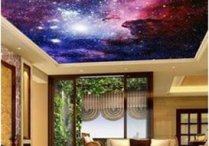 Ceiling Decals Mural 58 Best Ceiling Murals Images